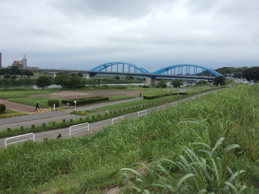 Shin Godzilla place