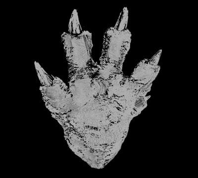 MyKaiju Godzilla | Gojira 2016