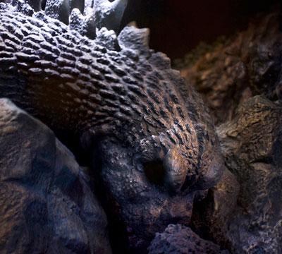 MyKaiju Godzilla | Sleeping Godzilla
