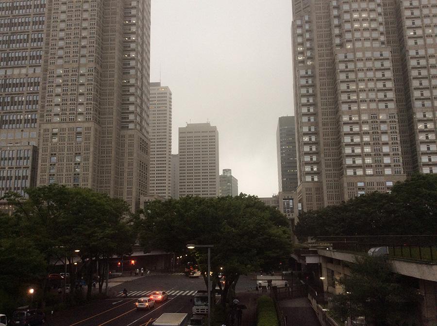 Shinjuku Chuo Park Bridge